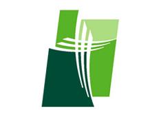 St. Joseph Candler Hospital logo
